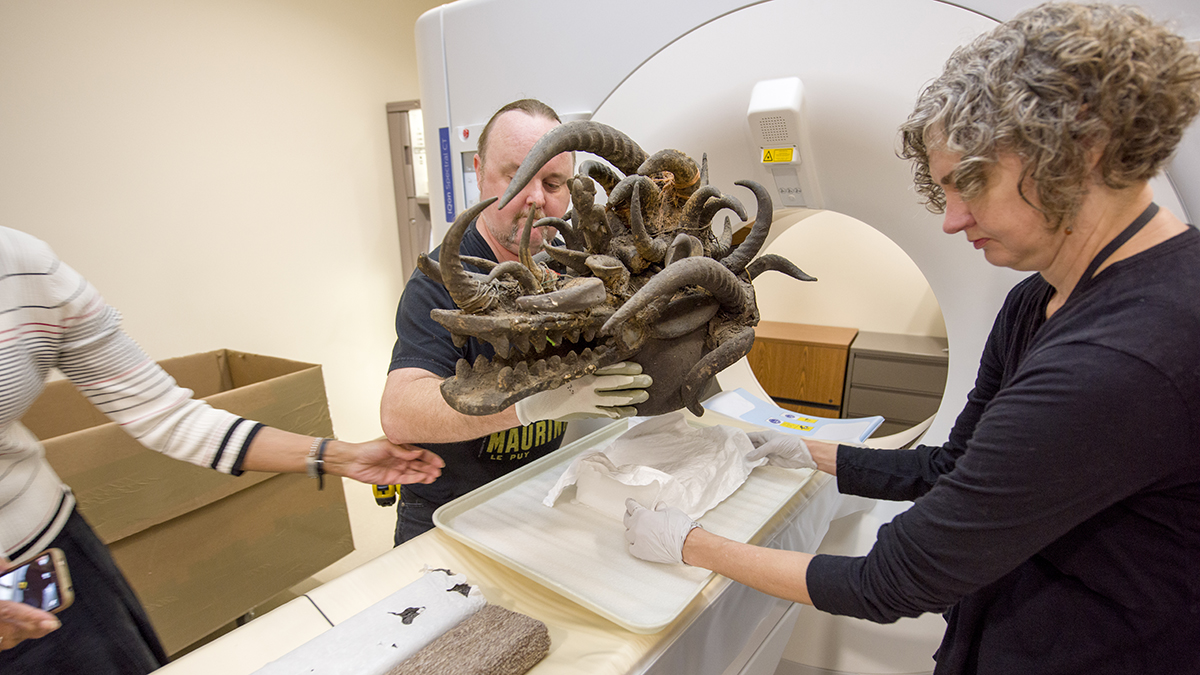 Science Uncovers Secrets of West African Helmet Mask at Dallas Museum of Art