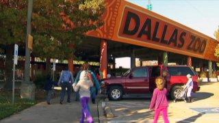082314 Dallas Zoo