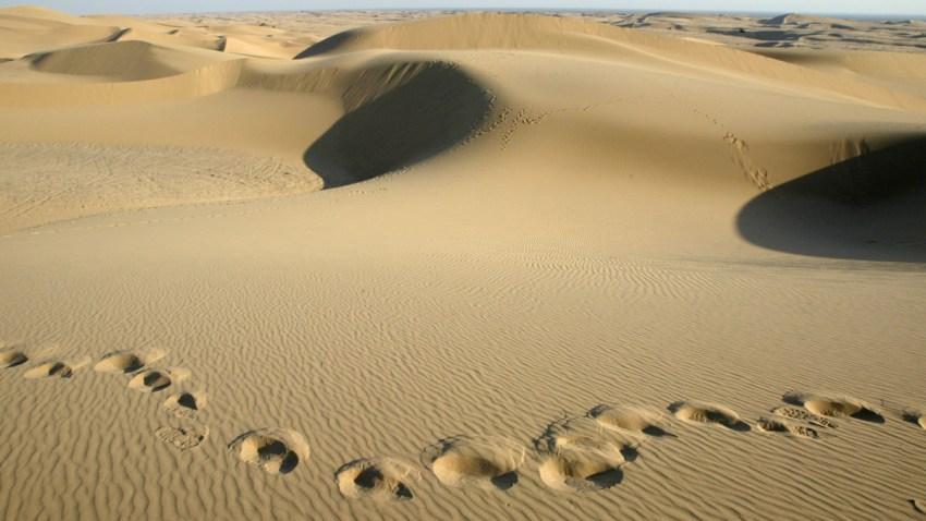 2179502DM21_dunes