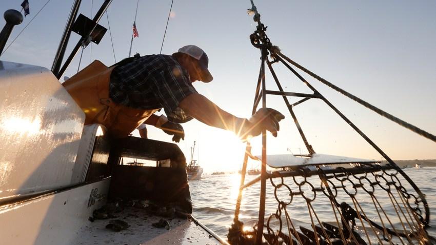 Chesapeake Bay Report