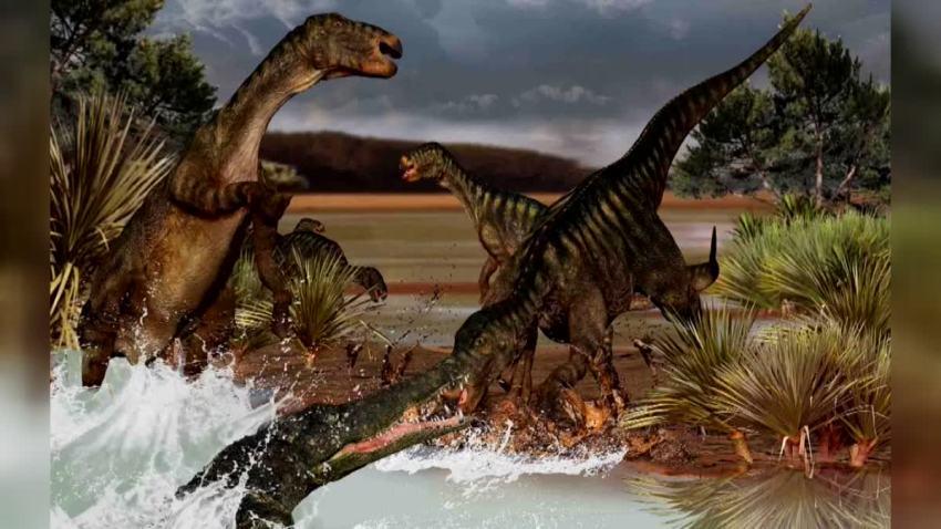 Arlington Dinosaur dig