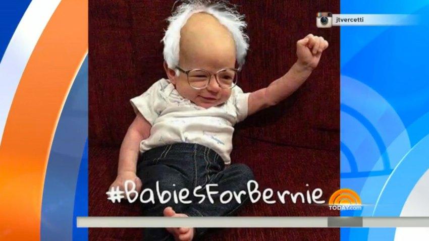Bernie-Baby-Screenshot