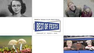 stills from participating films at Best of Fests 2020