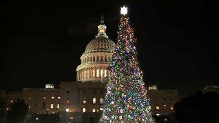 Capitol Christmas Tree 120419