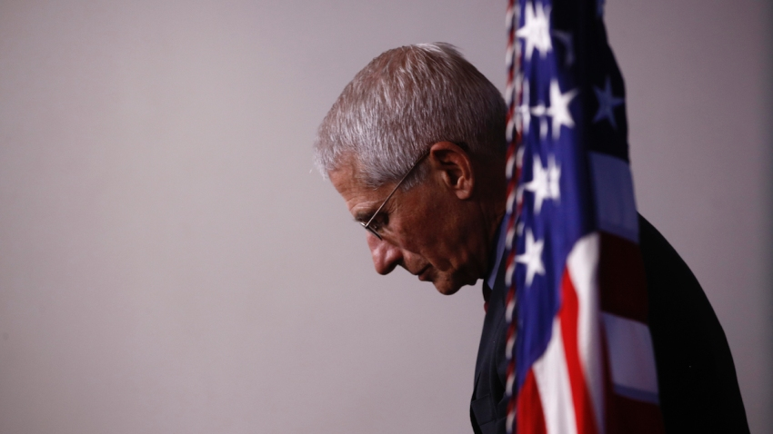 Dr. Anthony Fauci at a White House press briefing