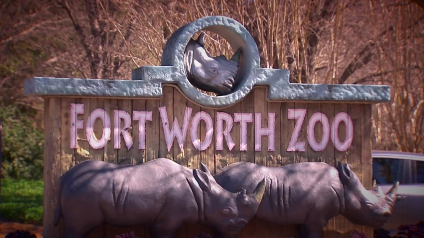 Fort Worth Zoo to Host Sensory-Friendly Day