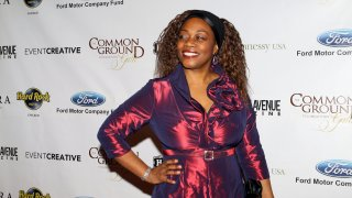 Actress Regina Taylor poses for photos during the 1st Annual Common Ground Foundation Gala at Hotel InterContinental in Chicago, Illinois on APR 16, 2011.