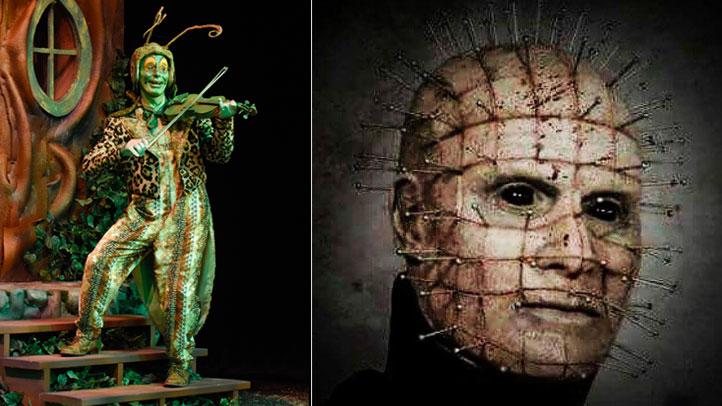 Grasshopper-Pinhead