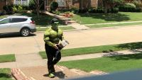 Superheroes Surprise Boy After Birthday Party Canceled Over Pandemic