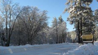 Mount-Laguna-Snow-0125-1