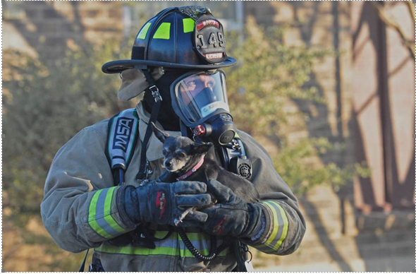 A family's dog is safe after a North Richland Hills firefighter saved the dog this morning.