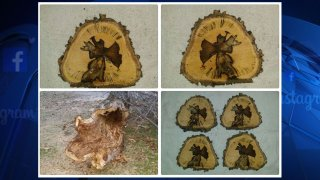 Man finds angels in tree - pics cleared for all NBC platforms