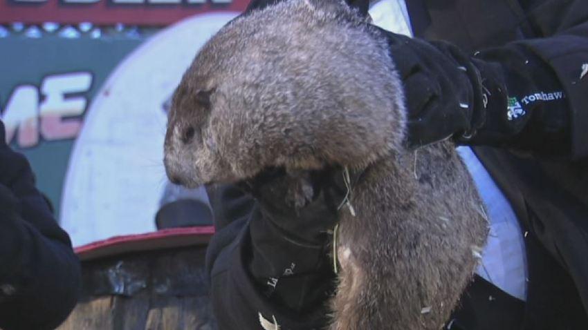 Punxsatawny Phil Groundhog Day 2017