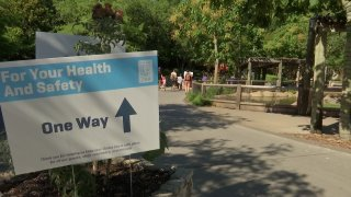 The Dallas Zoo reopened to the public on Friday after 11 weeks of being shut down during the ongoing coronavirus pandemic.