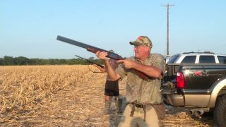 dove hunting