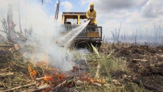 Florida Division of Forestry fire fighter, Tim Abramczyk, sprays foam on a hotspot that flared up as he works on containing a 50,316-acre brush fire on June 10, 2011 in West Dade, Florida.