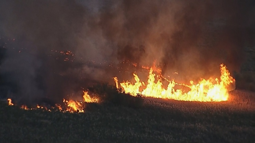 incendio_wetlands_park