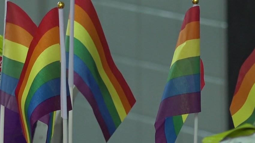 lgbtq flags