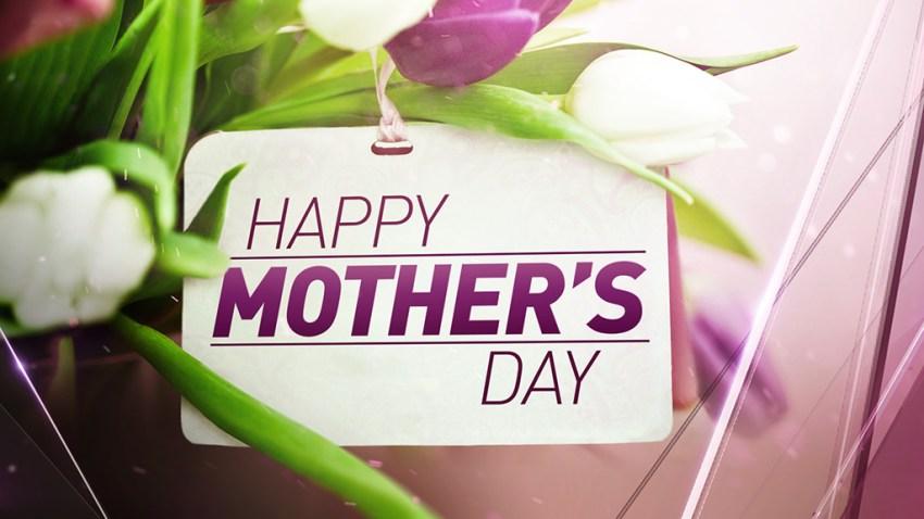 FSFin Mothers Day.tga