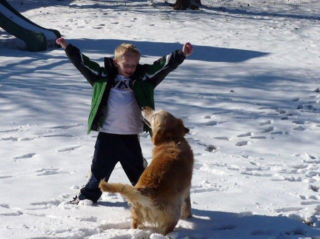 snow-boy-dog