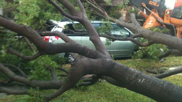 storm-damage-a