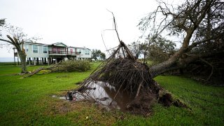 A tree is uprooted in the aftermath of Hurricane Laura Thursday, Aug. 27, 2020, in Sabine Pass, Texas.