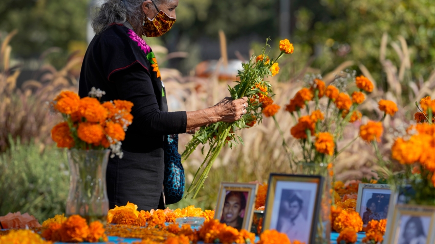 """Artist and altar maker Ofelia Esparza, 88, from East Los Angeles, brings fresh marigolds for her community altar for Day of the Dead, titled """"2020 Memorial to Our Resilience,"""" at Grand Park in Los Angeles, Thursday, Oct. 29, 2020."""