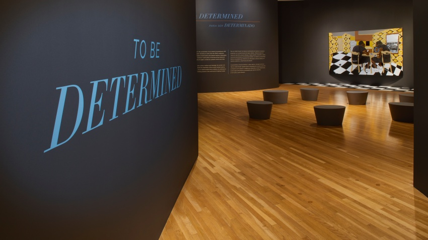 To Be Determined at Dallas Museum of Art
