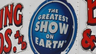 Ringling Bros Barnum and Bailey Circus