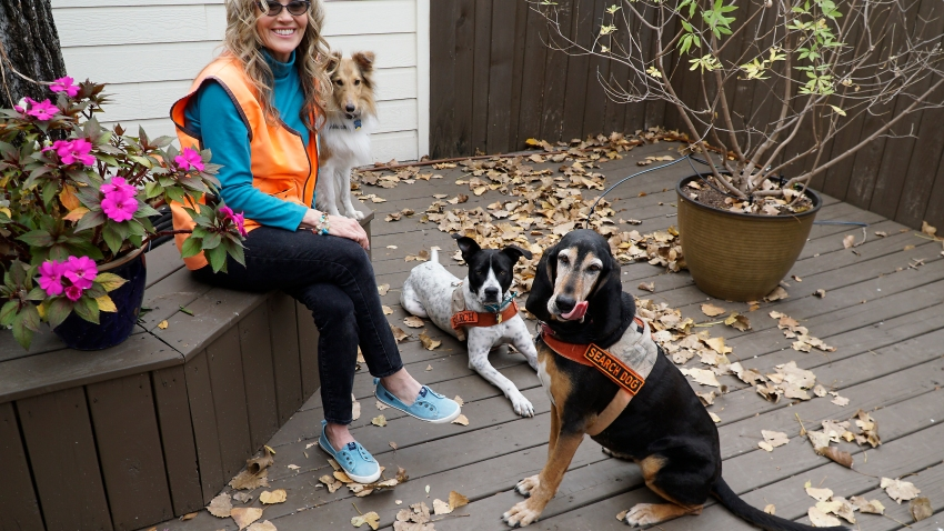 Bonnie McCririe-Hale with her dogs Idabel, a black and tan coon hound, Buck, a pointer pit bull mix, and Kaio, a Shetland sheep dog, at her home in Grapevine on Monday, Nov. 23, 2020. (Lawrence Jenkins/Special Contributor)