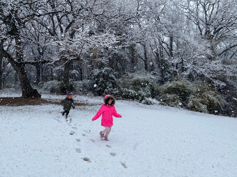 Viewers Share Photos as Snow Falls on North Texas – Gallery IX