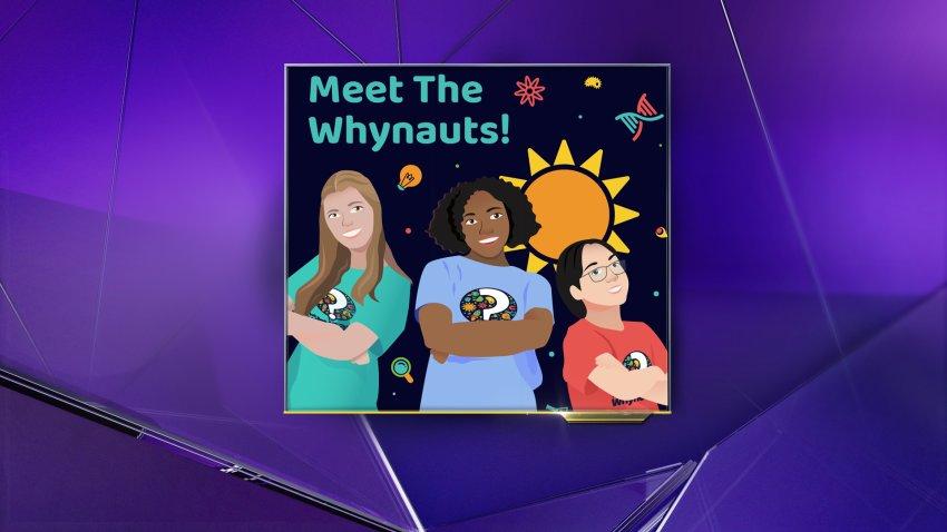 "The ""Meet the Whynauts"" logo"