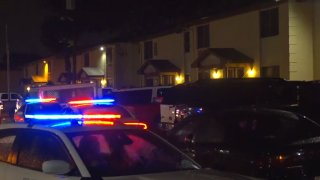 A 5-year-old boy was fatally shot Friday night in Pleasant Grove by another child, Dallas police say.
