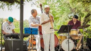 Herbie Johnson- Fair Park Blues and Jazz Festival