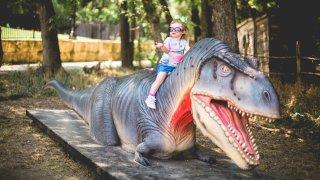 Child on Dinosaur at the Heard Museum Dinosaur Live!