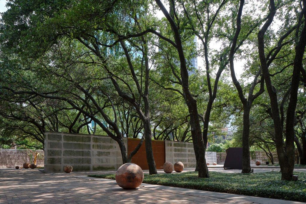 Dallas Museum of Art Bosco Sodi