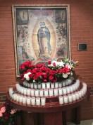 1-Foto-de-virgen-de-guadalupe-en-Dallas-Our-Lady-of-Guadalupe-in-Dallas-Cathedral