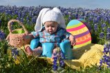 [UGCDFW-CJ-bluebonnets]Bluebonnet fun in Ennis Texas