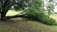 [UGCDFW-CJ-weather]Summer Storm