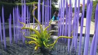 New-Chihuly-14