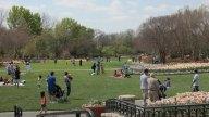 arboretum-overlookingpark