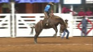 2016 FW Stock Show Breaks Record