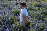 [UGCDFW-CJ-bluebonnets]Walking with Teddy in the blue bonnetts