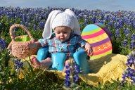 [UGCDFW-CJ-bluebonnets]Bluebonnet fun in Ennis Texas