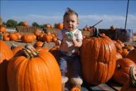 [UGCDFW-CJ-holiday]Babys first Pumpkin Patch