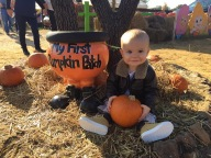 [UGCDFW-CJ-holiday]My son Duane at his 1st Pumpkin patch in Flower Mound