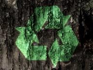 Generic Green 8