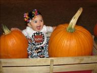 [UGCDFW-CJ-holiday]Madison 1st trip to pumpkin patch