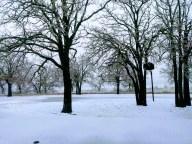 [UGCDFW-CJ-weather]Springtown Texas