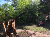 [UGCDFW-CJ-weather]Tree falls and blocks entry to home